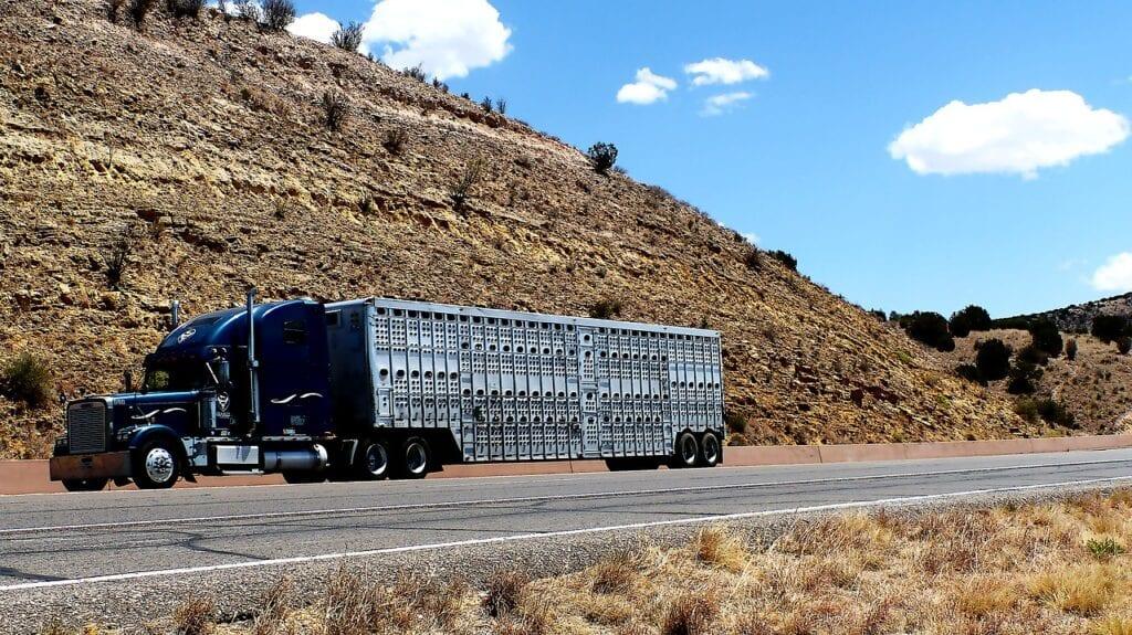 transport-truck-trailor-road