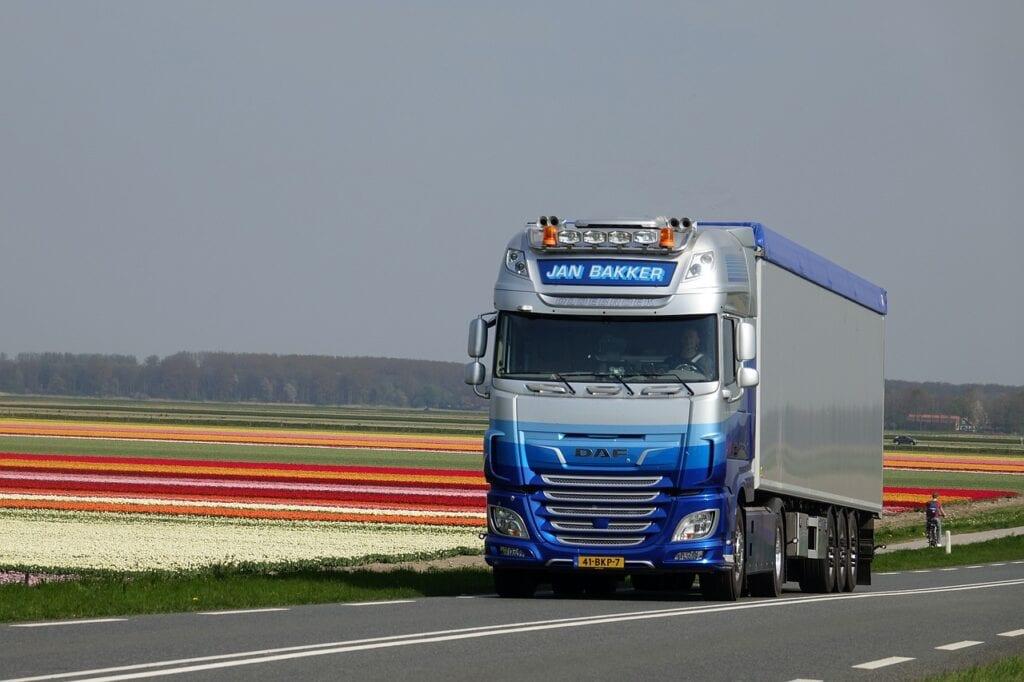 truck-transport-daf-tulips-tulip-field